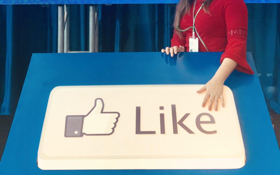 Facebook Digital Marketing Professor